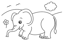 cool elephant pictures color cool coloring 6632 unknown