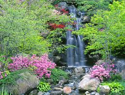 Japanese Rock Garden Plants Beautiful Japanese Gardens Enjoy The Pics Gossip Rocks Forum