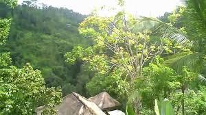 bali tour of ubud hanging gardens resort youtube