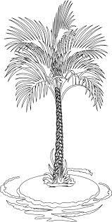 coloriage un palmier dory fr coloriages