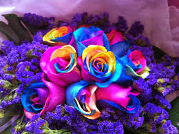 multicolored roses de floral gallery rainbow roses
