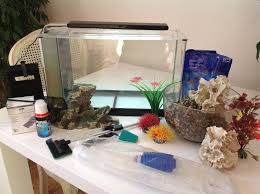 fish tank ornaments cleaning assessories in morningside