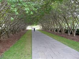 Dallas Arboretum And Botanical Garden Dallas Arboretum And Botanical Garden Dallas Tourist