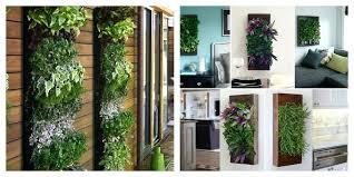 indoor herb garden wall diy herb garden wall indoor herb garden ideas interesting indoor