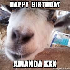 Meme Generator Happy - happy birthday amanda xxx animals with song quotes meme generator