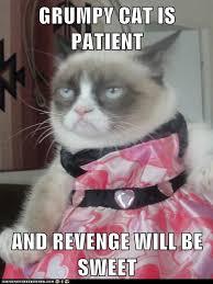 Grumpy Cat No Memes - grumpy cat is patient and revenge will be sweet revenge grumpy