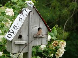 appealing unique bird feeders and house 56 free plans for bird