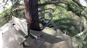Best Treehouse Best Tree House Ever Youtube