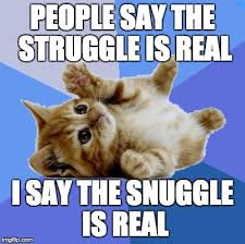 Snuggle Meme - the snuggle is real wholesomememes
