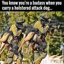 Bad Ass Memes - you know your a badass dog meme