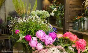 wall flowers oneday wallflowers bk magazine online
