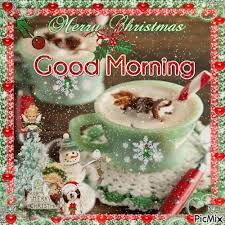 morning merry pictures photos and images for