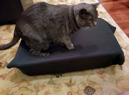 diy cat bed ideas simple and cool hill u0027s pet