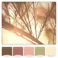 Pink Color Scheme 265 Best Bar Mitzvah Theme Images On Pinterest Colors Color