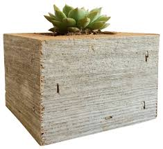 onesie succulent box rustic indoor pots and planters by