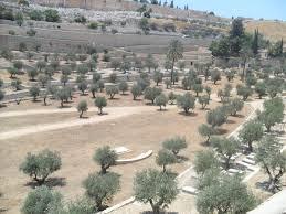 491 best biblical places images on pinterest jerusalem israel