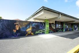 photos uh hilo mele mural unveiled first mele mural in state to ipu kukui wall left