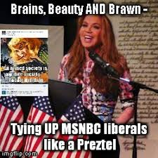 Pamela Meme - the presumptive philosopher pamela geller brains beauty and