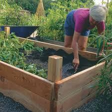 wonderful wood for raised bed vegetable garden raised bed
