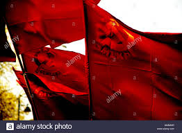 Stalin Flag Communist Flags Stock Photo Royalty Free Image 8800940 Alamy