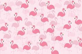 fancy flamingo wall mural murals wallpaper