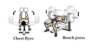 chest dumbbell flyes vs bench press u2013 which exercise is better for