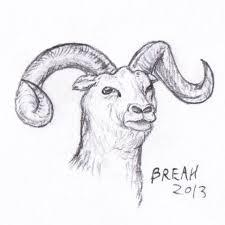 bighorn sheep sketch u2013 art by breah
