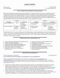 project director resume template 48 inspirational photos of project manager resume example resume