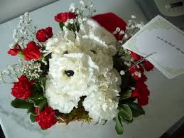 dog flower arrangement show and tell family