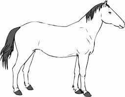 free horse coloring pages mustangs lipizzaners