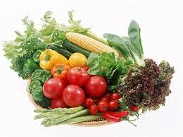 the main food groups of a balanced diet virginia muniz
