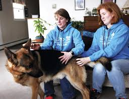 sle business plan recreation center business plans available in our marketplace www pet care center plan