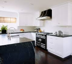 triple crown molding kitchen transitional with hood electric ovens