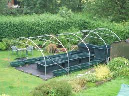 aquaponics greenhouse design indonesia republic hydroponics with