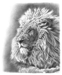 lion remrov u0027s artwork