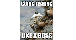 I Aint Mad At Cha Meme - top 20 fishing memes on the internet