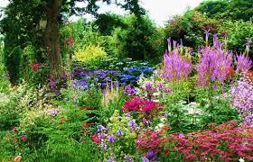Cottage Garden Design Ideas Cottage Garden Images