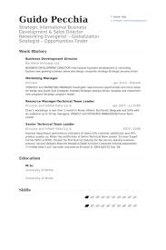 International Business Resume Sample by Business Development Director Resume Samples Visualcv Resume
