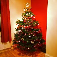 Decorated Christmas Trees Delivered Uk by Where Can I Buy A Real Christmas Tree In Huddersfield
