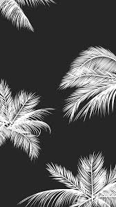 white and black wallpaper black white palm leaves palm trees like and repin noelito flow