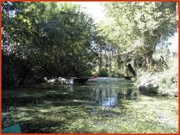 chambres d h es dans le marais poitevin chambres d hôtes dans le marais poitevin the s best s