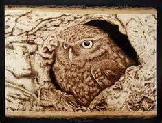 Free Wood Burning Designs For Beginners by Free Wood Burning Patterns For Beginners Yahoo Image Search