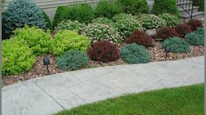 Best Rock Gardens Best Way To Maintaining A Rock Garden Rock Gardening Tips