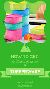 237 best tupperware lady images on pinterest tupperware recipes