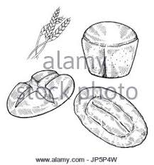 hand drawn sketch of sliced bread black and white simple line