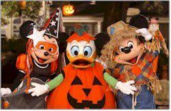 where to find thanksgiving dinner at disney world