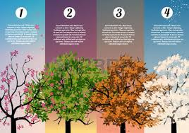 four seasons banners with abstract trees illustration royalty free