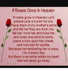 Hold My Flower Meme - if roses grow in heaven if roses grow in heaven lord please pick a
