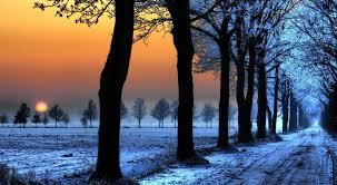 free winter hd wallpapers wallpaper wiki