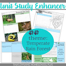 tropical rainforest amazon free resources u2013 teachers guides